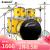 阿萨娜丝(Asanasi)ドラム 成年人儿童ジャズ ドラム初学入门考级专业演奏打楽器鼓 N-800黄色五鼓四镲